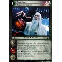 "Lot de 20 cartes de type ""C"" - The Fellowship of the Ring"