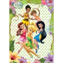 Disney Fairies poster PVC effet Pure 3D 30 x 42 cm